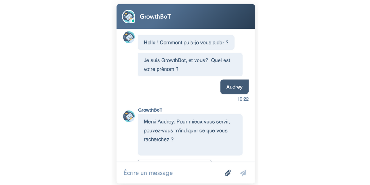Lead Nurturing : Chatbot